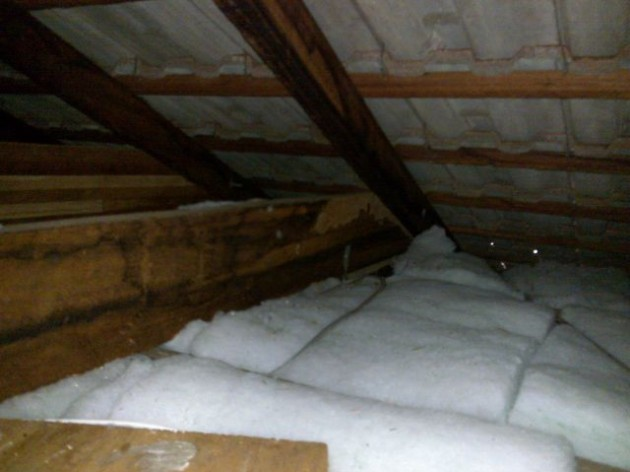 Termite damage to the Rafter in the roof void